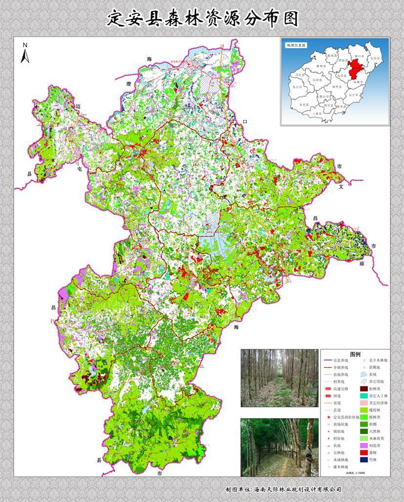 定安县森林资源分布图图片